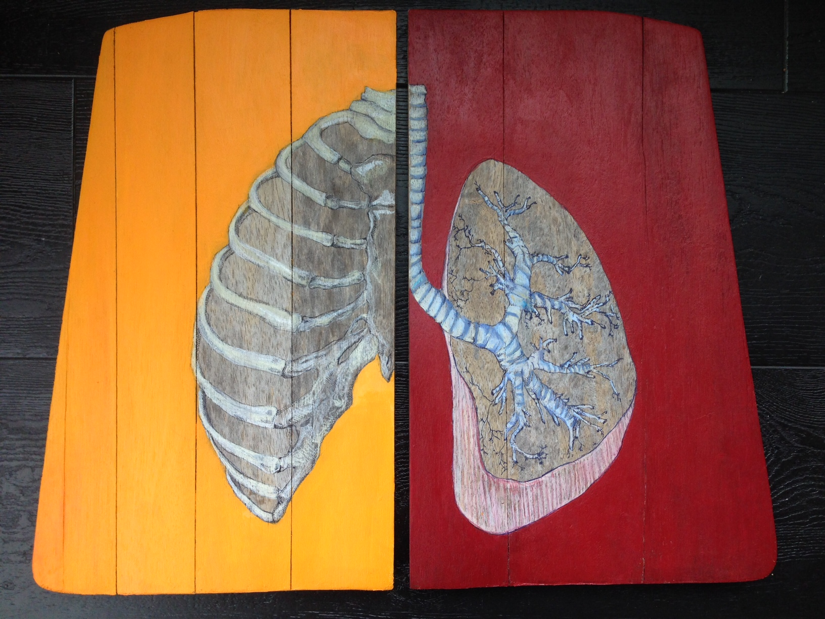 art ribs dividido